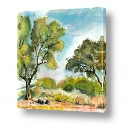 ציורים עירוני וכפרי | שני עצי זית