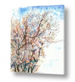 עץ שקד | ענפי שקדיה