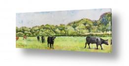 ציורים בעלי חיים | פרות במרעה