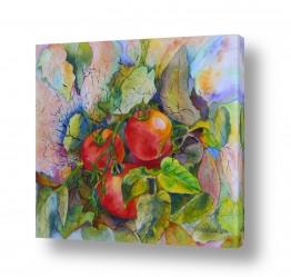 ציורים טבע דומם | עגבניות בעטיפה