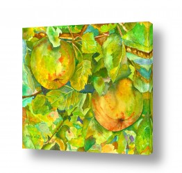 ציורים טבע דומם | שני תפוחים