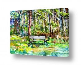 ציורים ציור בצבעי מים | ספסל ביער