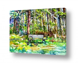 צמחים יער | ספסל ביער