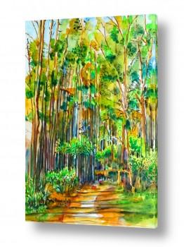 ציורים ציור בצבעי מים | שביל ביער