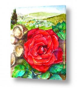 ציורים טבע דומם | ורד אדום