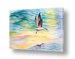 ציורים מים | ציפור עם תפוח