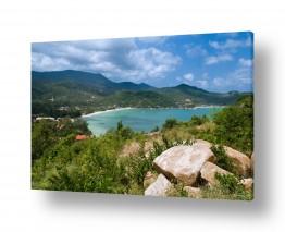 תמונות לפי נושאים טרופי | מפרץ חלומי