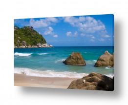 תמונות לפי נושאים טרופי | חוף טרופי