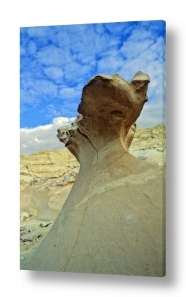 תמונות לפי נושאים סדק | צורות בסלע