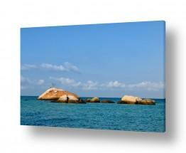 צילומים עידן גיל | סלעים...