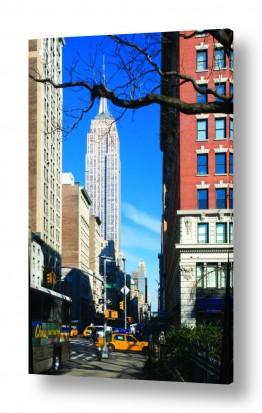 אורבני כבישים | ניו יורק במיטבה