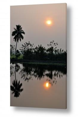 אסיה הודו | שקיע הודית