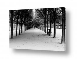 צילומים תמונות שחור לבן | פריס