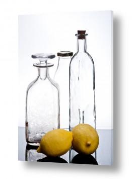 אוכל פירות | lemon