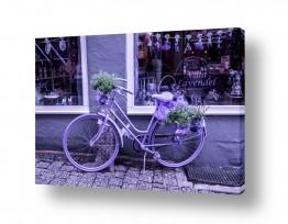 אירופה גרמניה | bicycle