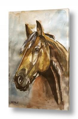 ציורים ציור בצבעי מים | סוס 6