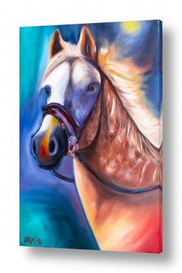 ציורים בעלי חיים   סוס במחשבה