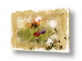 ציורים טבע דומם | פרחי אביב