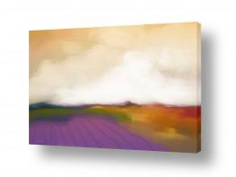 צבעים פופולארים צבע סגול | שדות לבנדר