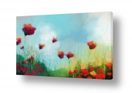 צמחים פרחים | חגיגה בשדה