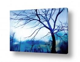 ציורים גורדון  | היער הכחול