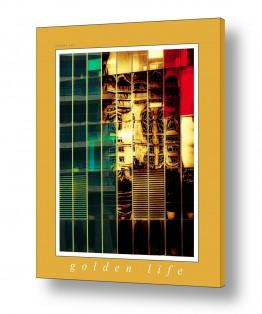 טבע דומם חלונות | חיי זהב