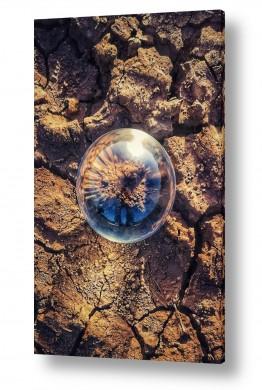 צילומים קובי פסח | אדמה טרשית בכדור