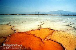 מינרלים בים המוות