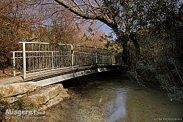 גשר 2