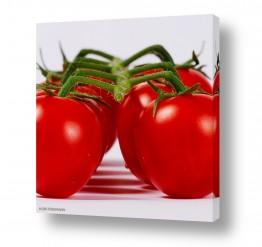אוכל סלט | עגבניות שרי