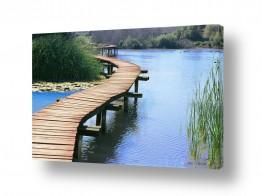 תמונות לפי נושאים קובי פרידמן | גשר