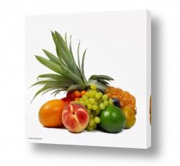 צמחים כרמים | פירות