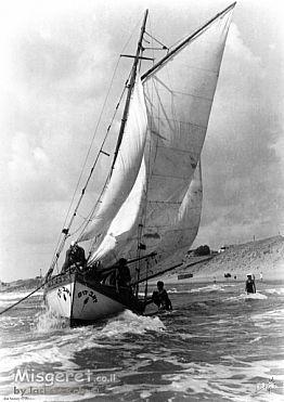 תל אביב 1937 - זאב הים