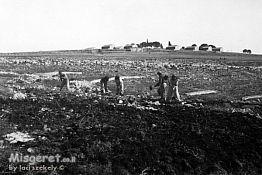 כפר עציון 1946 הכשרת ק