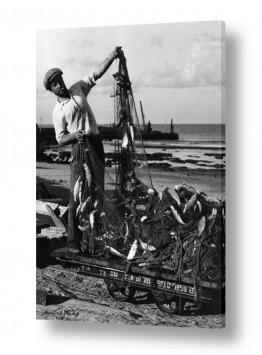תל אביב נמל תל אביב   תל אביב 1938 - דיג ושללו