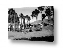 צילומים דוד לסלו סקלי | ביתניה 1945
