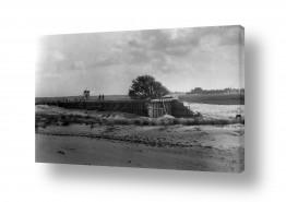 צילומים ארץ ישראל הישנה | חולות נבי רובין 1939