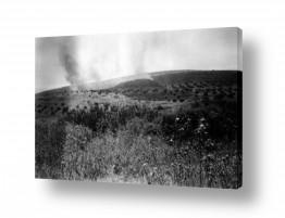 צילומים ארץ ישראל הישנה | ביתניה 1945 - בשדות