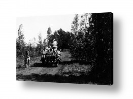 צילומים ארץ ישראל הישנה | שדה נחום 1947, עגלה ונוער