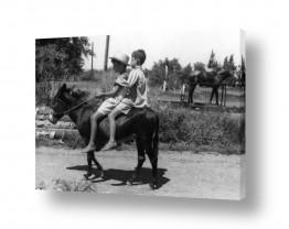 כפרי קיבוץ וכפר | עין חרוד 1947 ילדים וחמור