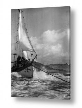 צילומים דוד לסלו סקלי | תל אביב 1939 זאב הים