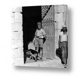 חיות מחמד כלבים | ירושלים 1938 נוטר בכניסה