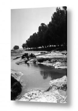צילומים ארץ ישראל הישנה | נבי רובין 1940 שטפון