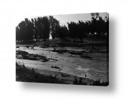 צילומים ארץ ישראל הישנה | נבי רובין 1940  שיטפון