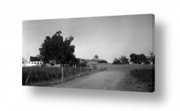 צילומים דוד לסלו סקלי | בית ג'ירג'ה 1940 ליד הבאר