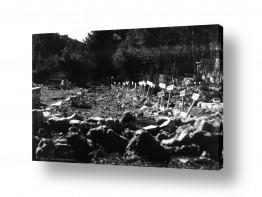תמונות לפי נושאים מין | קרית ענבים 1948 בית עלמין