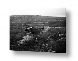 כלי טיס מטוס | תאונת מטוס 1948 סריס