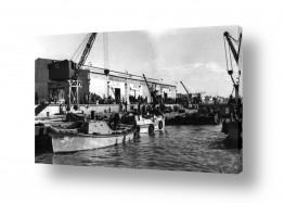פירות הדר תפוז | תל אביב 1937 פעילות במעגן