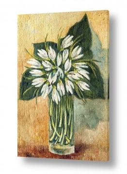 ציורים מריאנה קיידלוב | פרחי שלג