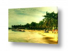 נוף מיים | חוף מקסיקני